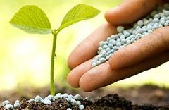 Recommendations from entering systems of fertilizers