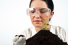 Agrochemical analysis of peat