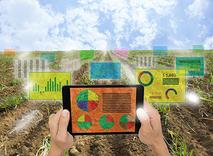 Agrochemical analysis fertilizer
